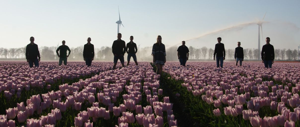 PopUp Band in de paarse tulpen 2019.